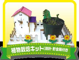 植物栽培キット(時計・貯金箱付き)