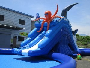 adventurewaterpark-octopus2