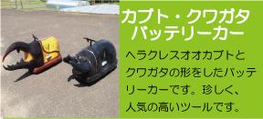 batterycar