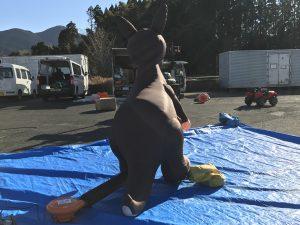 kangal-back