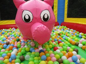 smallpig-pig